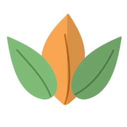 Flat leaves natural illustration