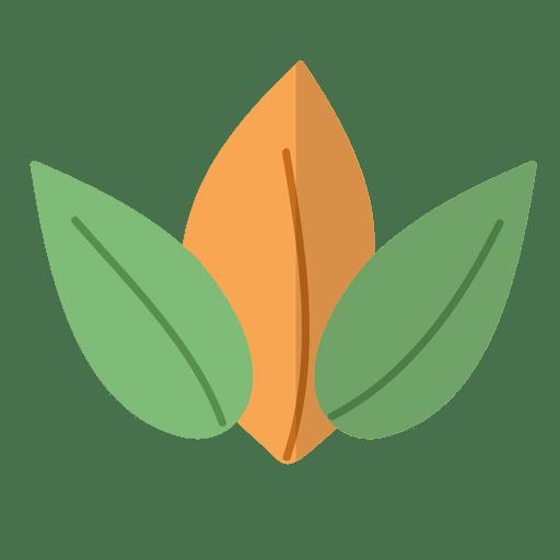 Flat leaves natural illustration Transparent PNG