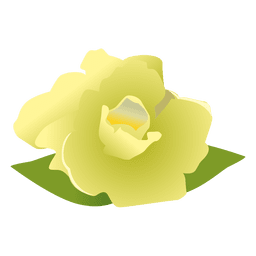 Gardenia flower cartoon 3