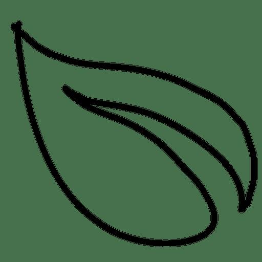 Hojas dibujadas a mano 1 - Descargar PNG/SVG transparente