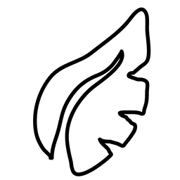 Dibujado a mano hoja de la planta 1