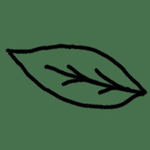 leaf outline transparent png svg vector