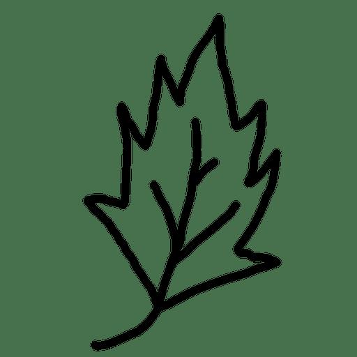 leaves outline transparent png svg vector