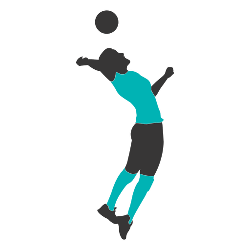 Male volleyball player 3