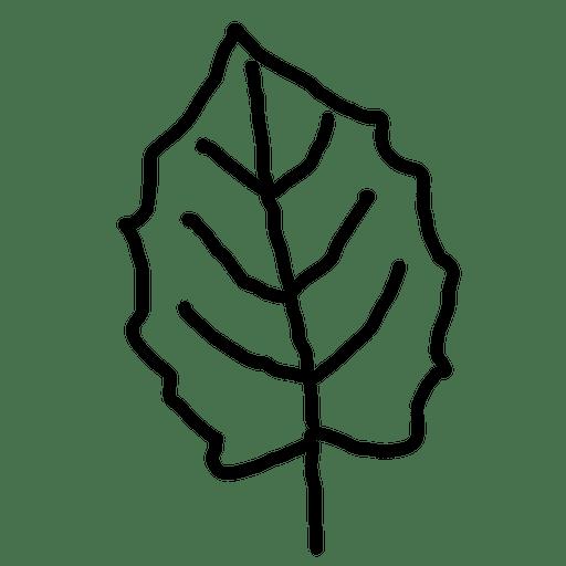 Outline maple leaf