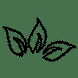 folha da planta esboço 1