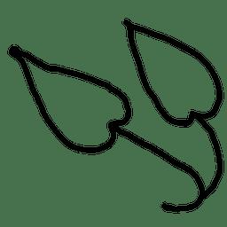 Plant leaf outline