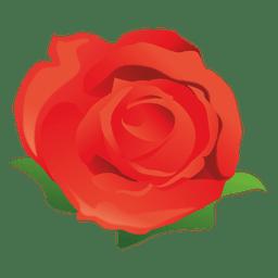 Rote Rose Karikatur