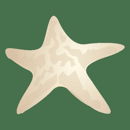 Pez estrella Transparent PNG