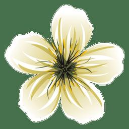 desenhos animados da flor branca