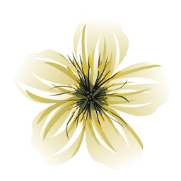 White flower cartoon