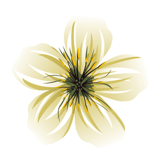 Dibujos Animados De Flores Blancas Descargar Png Svg Transparente