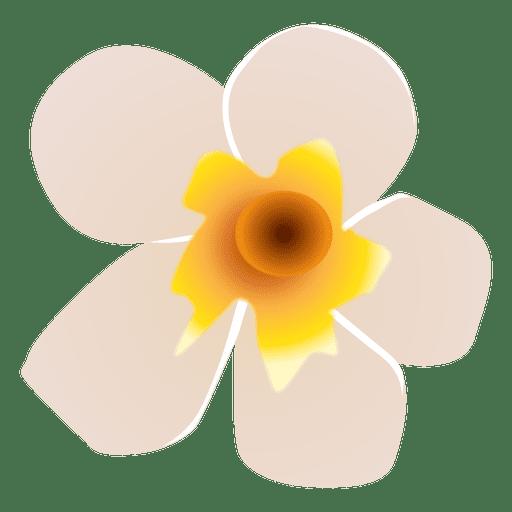 Spa flor blanca Transparent PNG