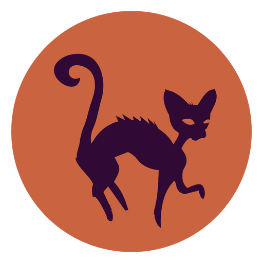 Witch cat circle icon Transparent PNG