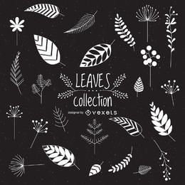 Illustrated leaves collection