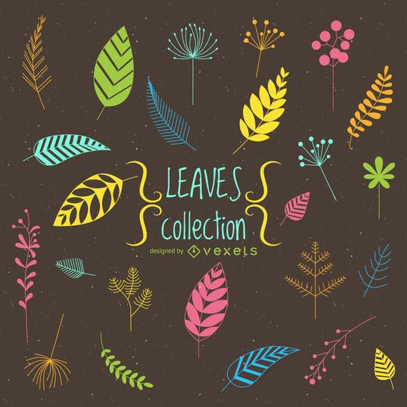 Drawn leaves collection