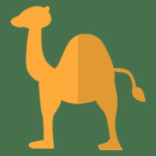 Camel flat dessert