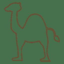 Sobremesa de carne de camelo