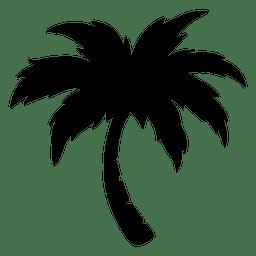 palmera palma
