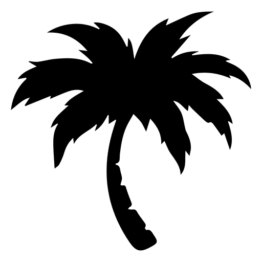 Palm palm tree Transparent PNG