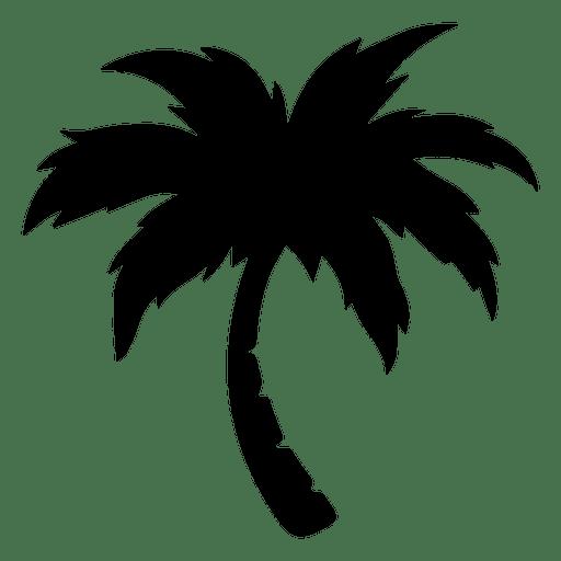 Palmeira Transparent PNG