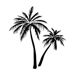 Black palm tree silhouette