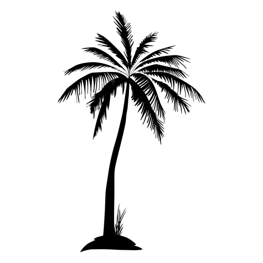 Black isolated palm tree silhouette Transparent PNG
