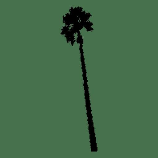 Hohe Palme Silhouette Transparent PNG