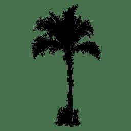 silueta de la palmera palma verano
