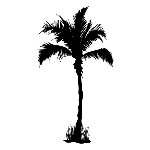 Palm palm tree silhouette summer Transparent PNG