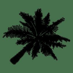 Palmeira silhueta palma