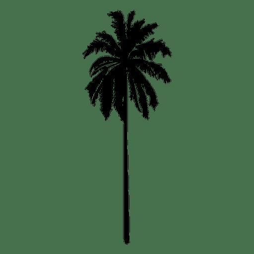 Palmeira de silhueta em pé reta Transparent PNG