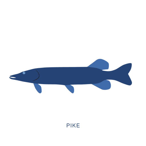 Pike fish fishing animal Transparent PNG