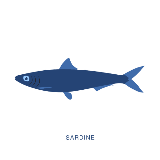 Sardine fish fishing animal Transparent PNG