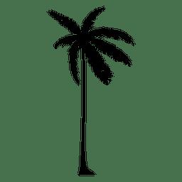 Schattenbild einer Palme