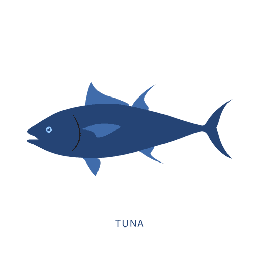 Tuna fish fishing animal Transparent PNG