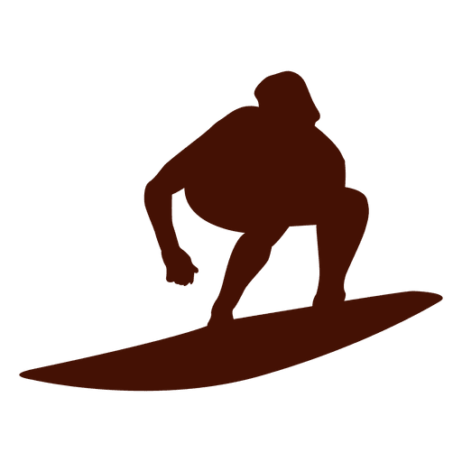 Surfing summer wave