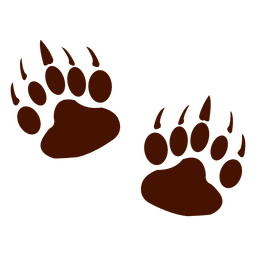 Bear animal footprints