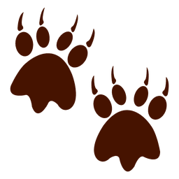 Bear footprint animal
