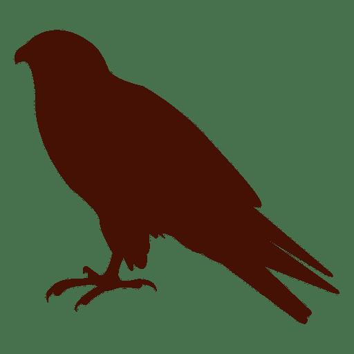 Silueta de mascota pájaro