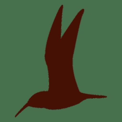 Colibrí silueta de pájaro Transparent PNG
