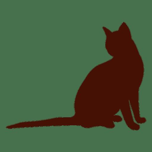Cat pet silhouette sitting