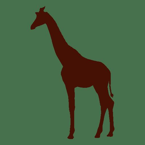 Silhueta De Girafa Em Vermelho Baixar Png Svg Transparente