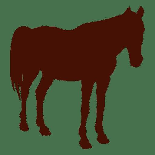 Silueta de la granja de caballos Transparent PNG