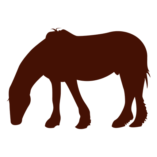 Horse farm eating silhouette Transparent PNG