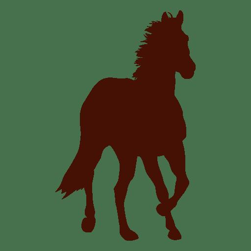 Granja de caballos frente corriendo silueta Transparent PNG