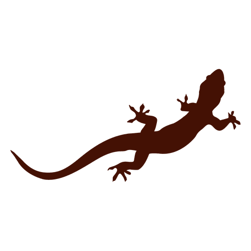 Iguana pet silhouette Transparent PNG