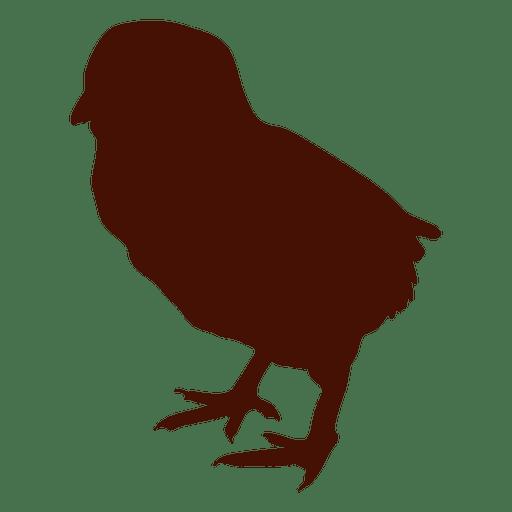 Silueta de pajarito de pollo Transparent PNG