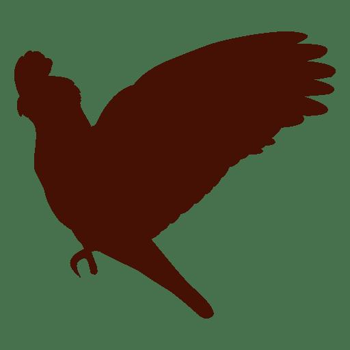 Parrot bird silhouette Transparent PNG