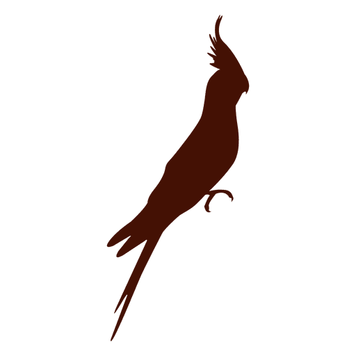 Tropischer Vogel Silhouette Transparent PNG